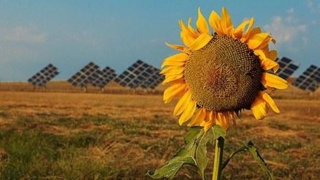 De la gestion des déchets à une économie verte — Agence européenne pour l'environnement | Déchets & Assainissement | Scoop.it