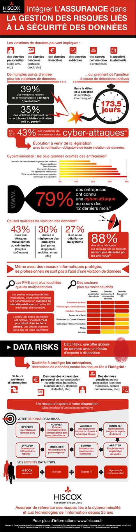 Données : quelle gestion des risques (infographie) | Enjeux informationnels - Comfluences.net | Scoop.it