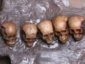 The History Blog » Blog Archive » 50 skulls, 200 jaws found at Mexico's Templo Mayor | Anthropology, Archaeology, and History | Scoop.it