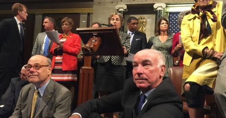 "THE IRONY: All 26 Democrats In The ""Sit-In"" Are Gun Owners... Here's The List 