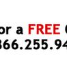 Affordable Pest Control Services Toronto