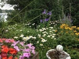 5 Tips for Make Small Yard Seem Bigger | SEO & Online Marketing | Scoop.it