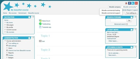 Check out the Responsive, Bootstrap-based Lernstar Theme   halatzos   Scoop.it