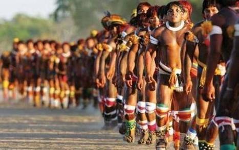 170 indígenas se suicidarán de manera colectiva | Profesión Palabra: oratoria, guión, producción... | Scoop.it