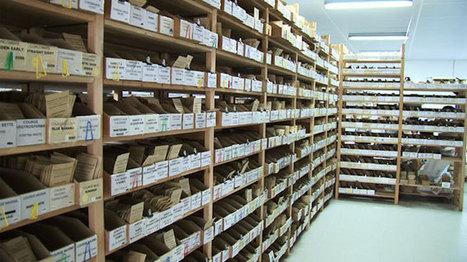 L'association Kokopelli : base arrière pour la sauvegarde de la biodiversité des semences | Chuchoteuse d'Alternatives | Scoop.it