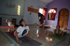 Hatha Yoga TTC India: 10 Hacks to Pass It with Professional Edge | School of Holistic Yoga and Ayurveda Goa | Scoop.it