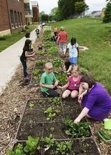 Hamilton, Ohio school garden continues to grow | School Gardening Resources | Scoop.it
