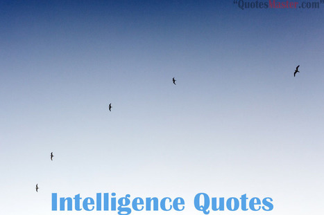 Intelligence Quotes - Get Quotes, Sayings, Quotation | Entertainment | Scoop.it