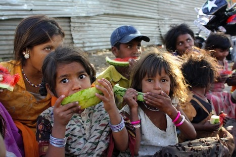 India's drought looms larger than food crisis | Food Security | Scoop.it