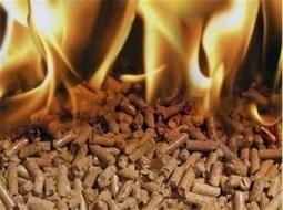 Groups laud biomass heat inclusion in federal GHG Executive Order | Biomassmagazine.com | Salon Bois Energie du 12 au 22 mars 2015 à Nantes | Scoop.it