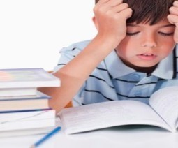 Is Dyslexia a Brain Dysfunction? An Alternative Interpretation of the Facts | Parenting Hub | Neuroscience | Scoop.it