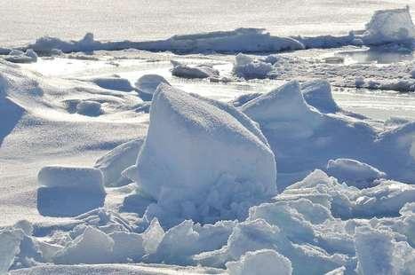 Melting Ice Could Wake Up Ancient Frozen Viruses | Développement durable et efficacité énergétique | Scoop.it