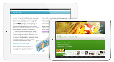 Parenting Tip: Back to School guide for buying an iPad | education | Scoop.it