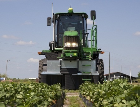 Robotic strawberry harvester 'mimics human behavior' | Agriculture news | Scoop.it