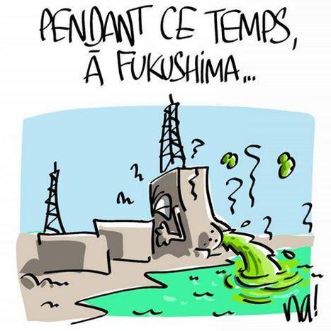 Fukushima-Daiichi : la radioactivité 270 km autour de la centrale !   Voie Militante   Japon : séisme, tsunami & conséquences   Scoop.it