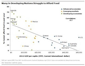 Almost a quarter of Americans struggle to afford food | Food issues | Scoop.it