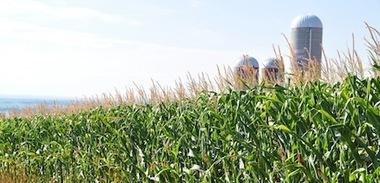 Québec : Recommandations d'Équiterre pour réduire la dépendance aux énergies fossiles en agriculture. | Chimie verte et agroécologie | Scoop.it