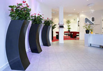 Office and Indoor Plants – What are the benefits to Businesses? | Property Aspects Manchester | office plants | Scoop.it