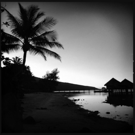 The Beach: a Black & White Mobile Photography Photo Essay of Tahiti | My Life's a Trip | Awesome Visuals | Scoop.it