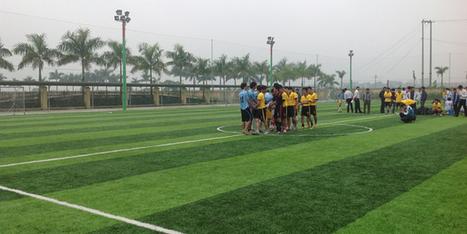 Cỏ nhân tạo, VEC GROUP cung cấp đa dạng các loại cỏ nhân tạo sân bóng đá | Sân cỏ nhân tạo | Scoop.it