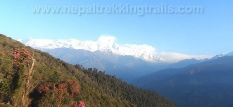 Ghorepani poon hill Trekking, Annapurna Panorama Trek - Nepal Trekking | Nepal Trekking Trails | Scoop.it