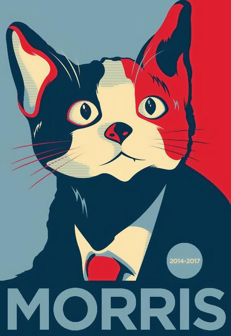 Barsik, Morris, Stubbs... et les autres : quand les chats prennent le pouvoir — | Les chats c'est pas que des connards | Scoop.it
