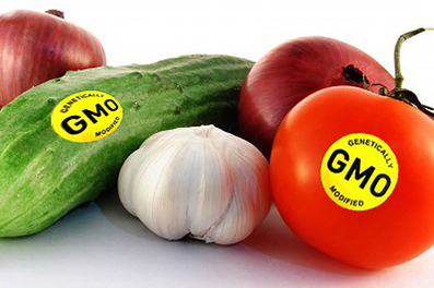 Keep Your Government Hands Off My Genetically Modified Food! What's Next After Prop 37 : Living Green Magazine | Food issues | Scoop.it