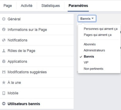 11 nouveautés des pages Facebook et comment les personnaliser | Actua web marketing | Scoop.it