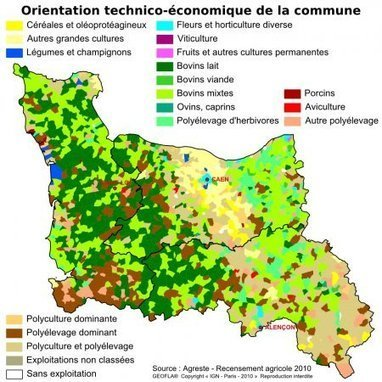 Ministère de l'agriculture, de l'agroalimentaire et de la forêt - Agreste - La statistique, l'évaluation et la prospective agricole - Basse-Normandie | Ophélie Michelet | Scoop.it