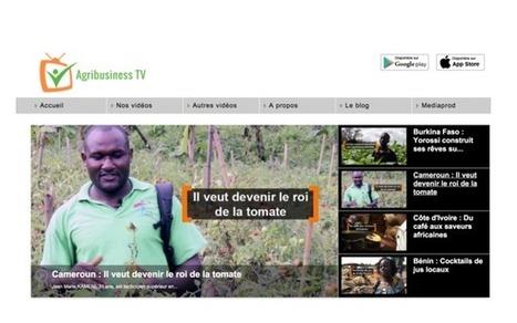 Quand les médias africains se réinventent dans l'agriculture, la musique, la mode ou la beauté | DocPresseESJ | Scoop.it