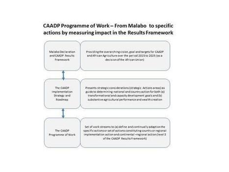 CAADP on Twitter   NEPAD CAADP: Agriculture, Food Security and Nutrition in Africa   Scoop.it