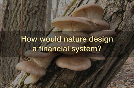 Community Credit: The Next Generation of Financial Architecture – Biomimicry Institute | soul rebels | Scoop.it