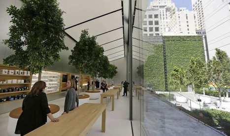 Apple lance sa nouvelle génération d'Apple Store , et mue d'une marque connectée et gd public à une marque luxe | LAB LUXURY and RETAIL : Marketing, Retail, Expérience Client, Luxe, Smart Store, Future of Retail, Commerce Connecté, Omnicanal, Communication, Influence, Réseaux Sociaux, Digital | Scoop.it