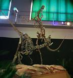 Presentan a Bicentenaria argentina, una nueva especie de dinosaurio | Ciencia y Tecnología Iberoamericana | Scoop.it