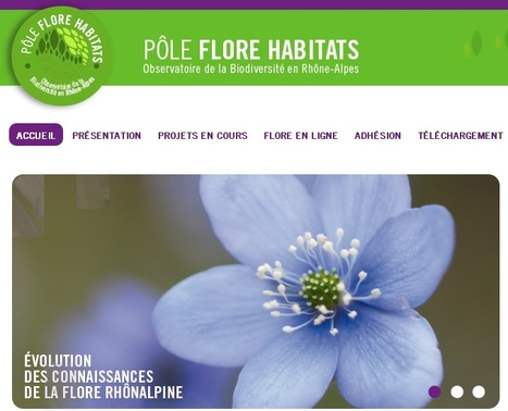 Mise en ligne de la plateforme du Pôle d'information flore-habitats de Rhône-Alpes | Solutions alternatives pour un monde en transition | Scoop.it