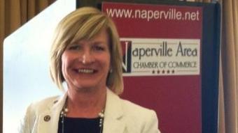 Representative Darlene Senger Receives Illinois Chamber Champion of Free Enterprise Award | Local elected officials | Scoop.it
