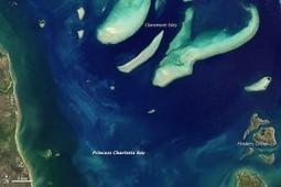 Eyeing Fragile Coral Reefs from Space : Earth Imaging Journal: Remote Sensing, Satellite Images, Satellite Imagery   Week 4 Tess Middleton ENV202   Scoop.it