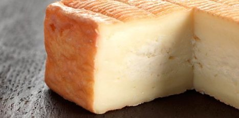 Croquants au maroilles et pain d'épices - la recette sur Ça drache en Nord | Gastronomie Nord-Pas de Calais | Scoop.it