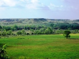 Land conservation easement workshop to be held Nov. 3 in Floresville | Texas Water Resources Institute | Scoop.it