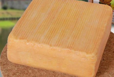 Avesnois : un lot de maroilles retiré de la vente après la mise en évidence de listeria   The Voice of Cheese   Scoop.it