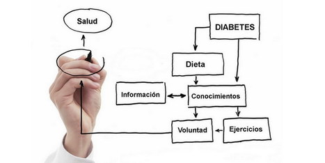 La Importancia De Adquirir Conocimientos Para Tratar o Revertir La Diabetes | http-www-scoop-it-saludynutriciononline-com | Scoop.it