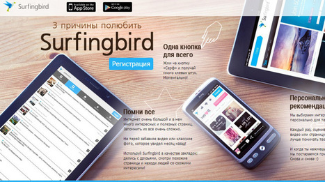 Russia's first StumbleUpon clone, Surfingbird, closes $2.5M funding deal | Social Media Company Valuations and Value Drivers | Scoop.it
