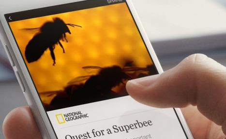 Instant Articles and the future of RSS   François MAGNAN  Formateur Consultant   Scoop.it