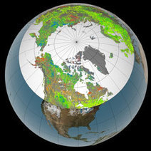 Tundra Takeover - Global Warming Pushing Trees North | CLIMATE CHANGE WILL IMPACT US ALL | Scoop.it