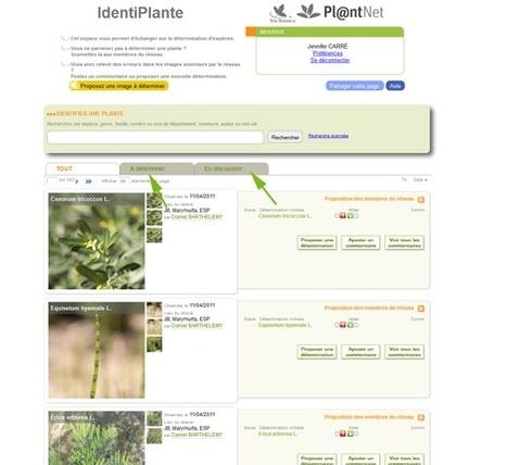 Quelle est donc cette plante? Faites vous aider en rejoignant IdiPlante, la communauté des botanistes en herbe | ville et jardin | Scoop.it