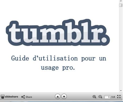Guide d'utilisation de Tumblr pour un usagepro | En Tongs : le Mag des Media Sociaux | Scoop.it