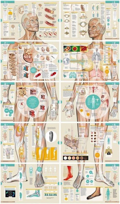 Haga clic para continuar: diciembre 2010 | diseño de información | Scoop.it