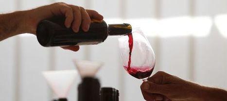 Le vin rouge prévient du vieillissement, c'est scientifiquement prouvé | Images et infos du monde viticole | Scoop.it