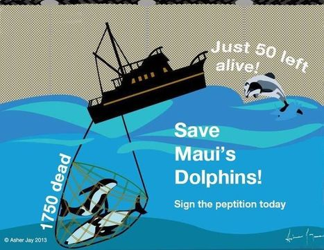 "OCT 10 DEADLINE: Save New Zealands Last 54 ""#Maui"" #Dolphins from #Extinction #Petition  Pls sign & share wide* 