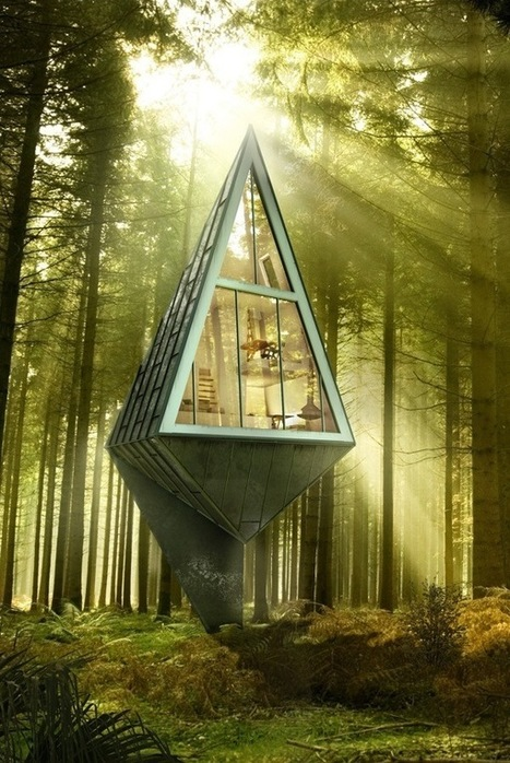 Modern Eco-Friendly Homes Set Amongst the Trees | Social studies | Scoop.it